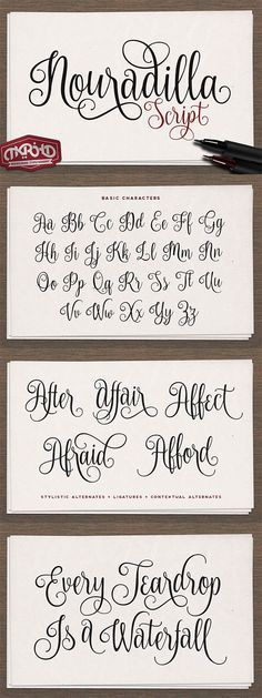 Nouradilla Script is a brilliant calligraphy font that is free until 17/05/16. It is also PUA Encoded meaning that it is fully accessible to everyone.
