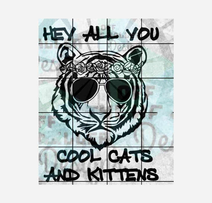 Best Custom Shirts Socks Mugs Personalized Gifts Onyx Prints In 2020 Cats And Kittens Cool Cats Kittens