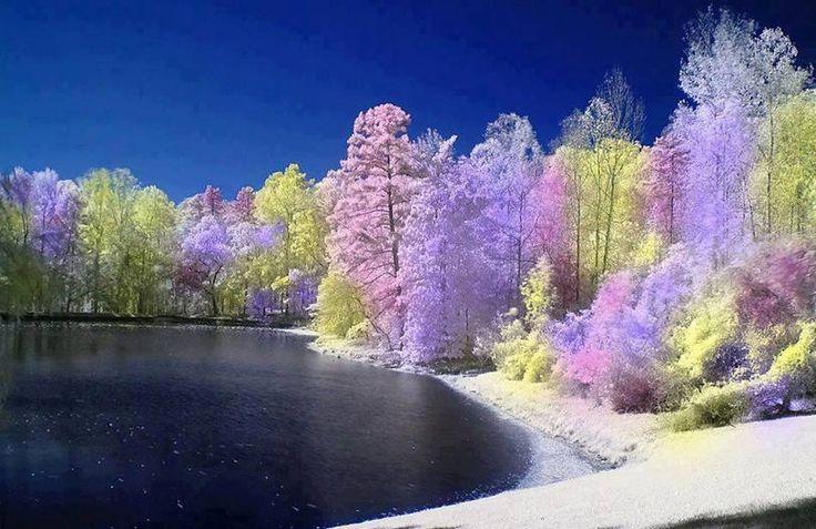Colorful Nature Scenes: Beautiful, Virginia And Colors