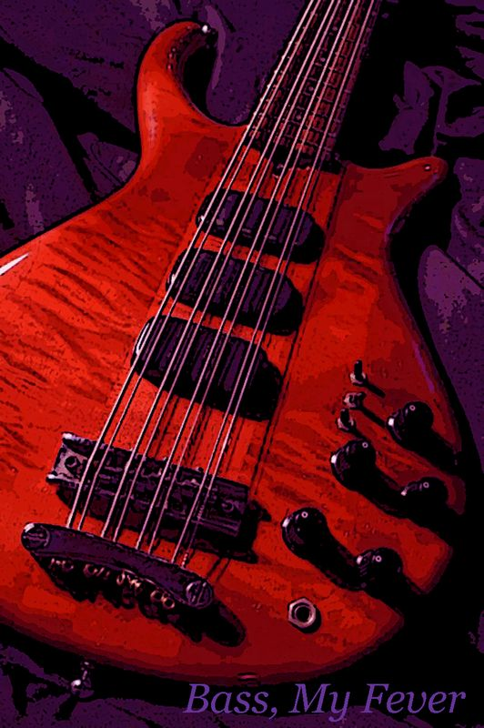 """BASSES - Bass My Fever - Covering all the """"basses"""""""