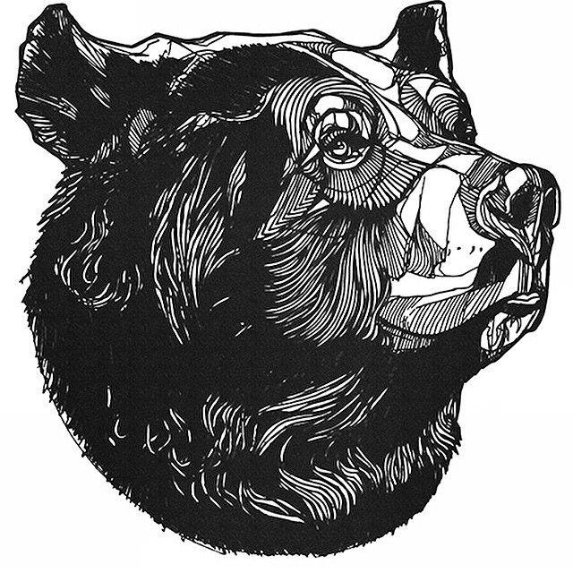 bear mordu sketch - Buscar con Google