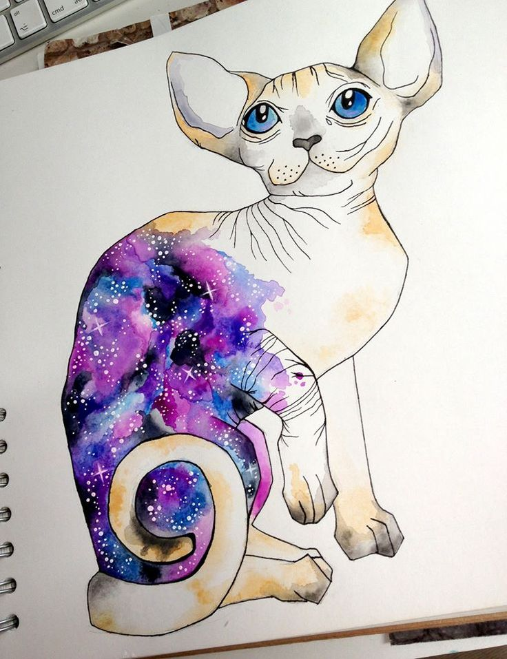 #ElementEdenArtSearch For this Galaxy printed Sphynx Cat I used watercolour, acrylic paint and black fineliner.