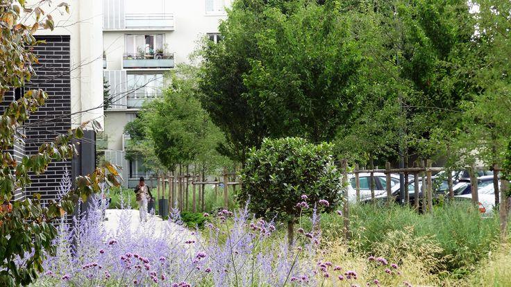 Insertion paysagère des aires de stationnement résidentielleshttp://www.compagniedupaysage.com/projects/quartier-bel-air/