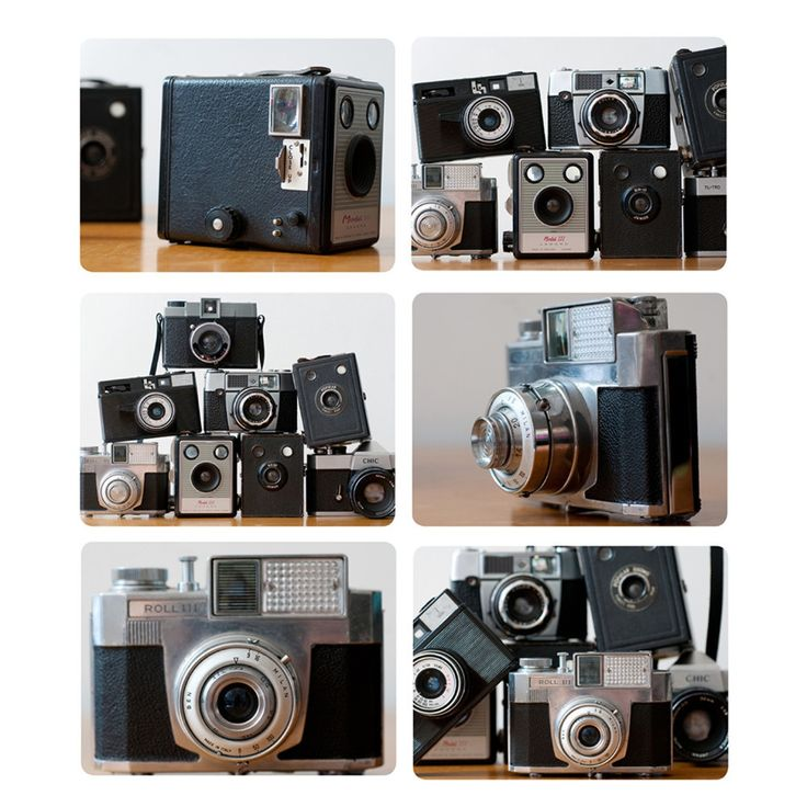 Ella Doran Placemats | Cameras -  Bloomsbury Store - 1