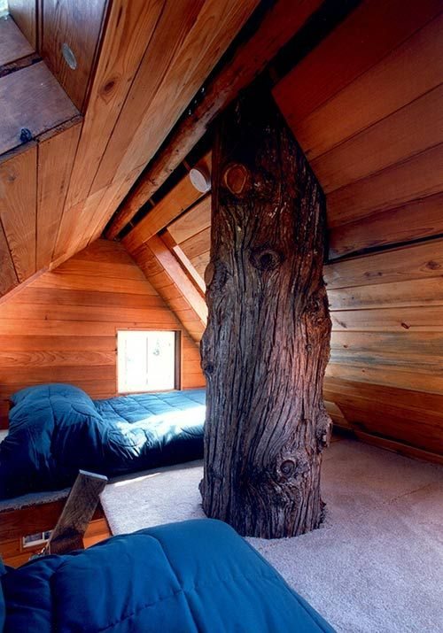 Cedar Creek Treehouse, Near Ashford, Wash.