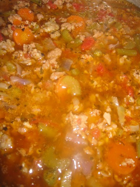 Yummy Paleo Soup - Olive Oil Red Onion 1 lb of beef 1 lb of pork sausage  sea salt/garlic powder/basil/oregano/cayenne pepper 4 sliced carrots 8 sliced stalks of celery two big handfuls of green beans 4 cups of chicken broth 1 can of diced tomatoes