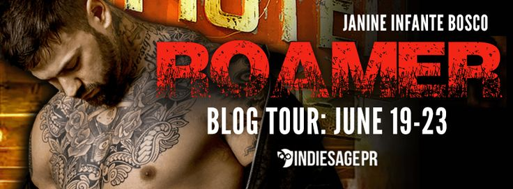 JB's Book Obsession : ARC Review & Blog Tour: Roamer Book 3 in The Nomad...