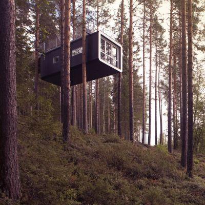 Elsker du skogens ro, lokale matopplevelser og enestående arkitektur