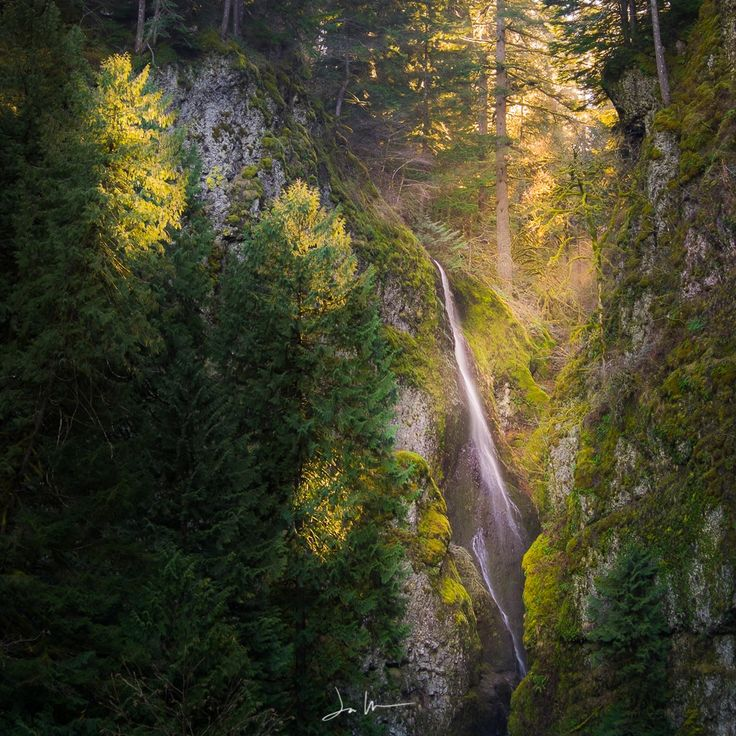 Summer Rays by Justin Walker on 500px