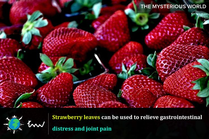 #health #strawberry #facts