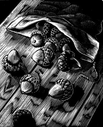 Michael McCurdy wood engraving from The Man Who Planted Trees.