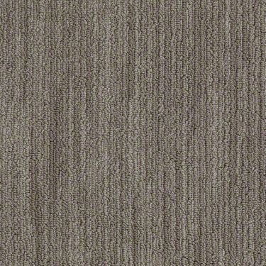 279 Best Images About Stainmaster Carpet On Pinterest