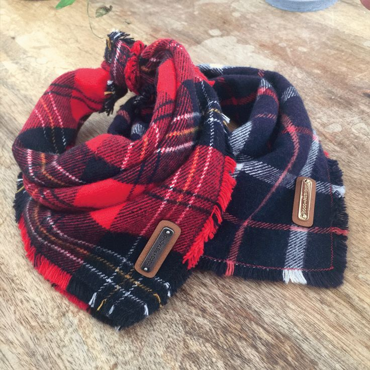 Coco + Pistachio saved to Coco + Pistachio Lennan and Amadeo, from the AW 2016 Collection at Coco + Pistachio | Fine Pet Accessories, Red Plaid Style, Navy Plaid Style, Dog Bandanas, Fall - Winter Dog Fashion