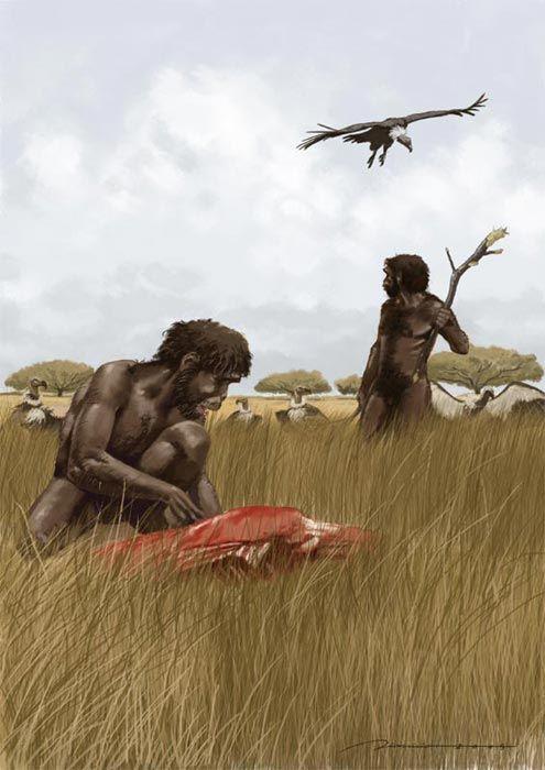 Homo habilis in Africa