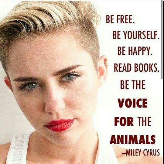 Miley Cyrus papery magazine quote Celebration quotes