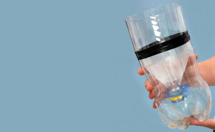 Faça você mesmo: armadilha ecológica contra moscas
