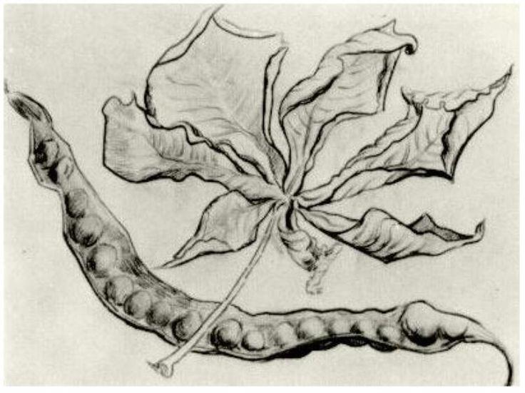 Dead Leaf and Pod Vincent van Gogh Drawing, Black chalk Auvers-sur-Oise: June - July , 1890