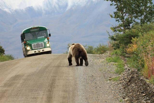 Alaska Stereotypes