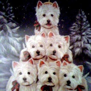 Westie Tree. Don't know how you would ever get six Westies to sit still for this long.