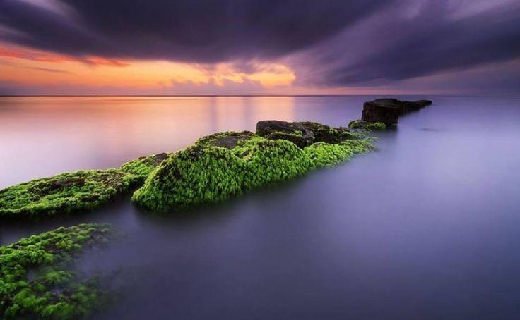 Mossy rocks in Matahari, Bali