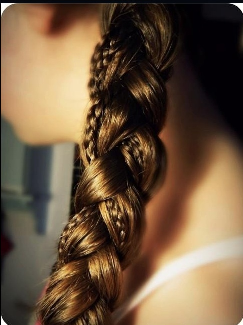 A Braid in a BraidHair Ideas, Small Braids, Big Braids, Hairstyles, Long Hair, Beautiful, Longhair, Hair Style, Braids Hair