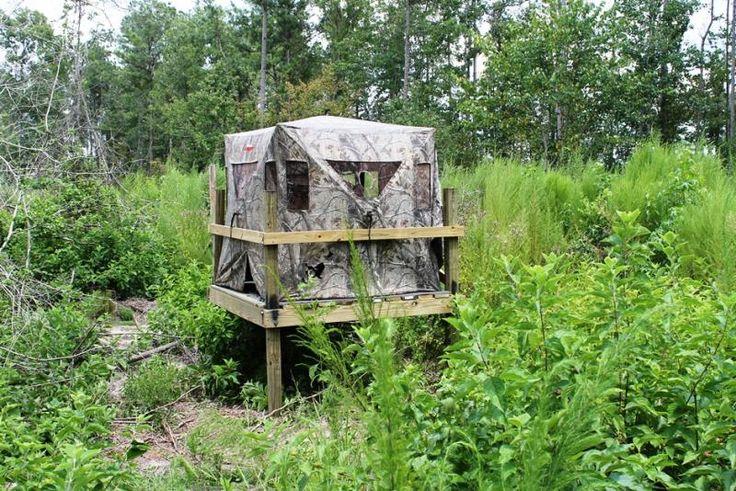 109 best images about deer stands on pinterest for Elevated deer hunting blinds