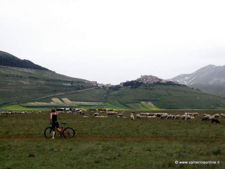 Misure di conservazione dei Siti Natura 2000, il Parco accoglie tutte le osservazioni del Comune di Norcia