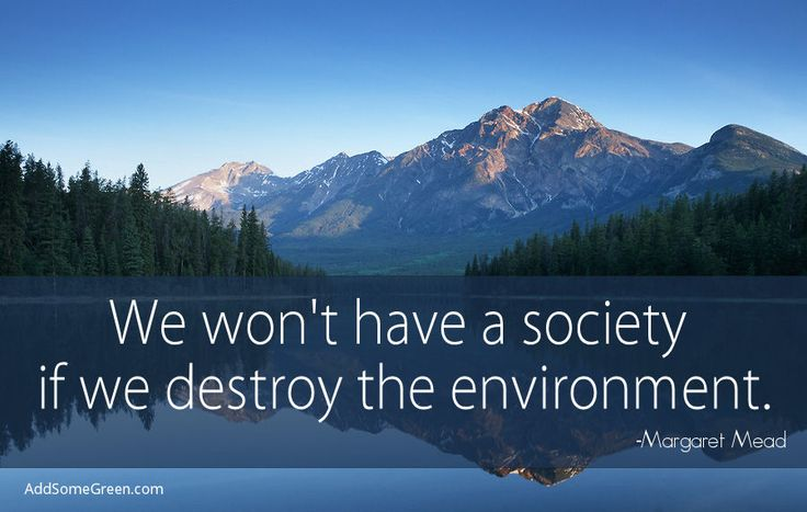 We won't have a society if we destroy the environment. Margaret Mead