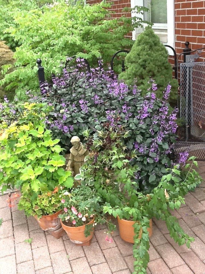 Delighful Flower Garden Ideas Ohio Small Gardens And Design