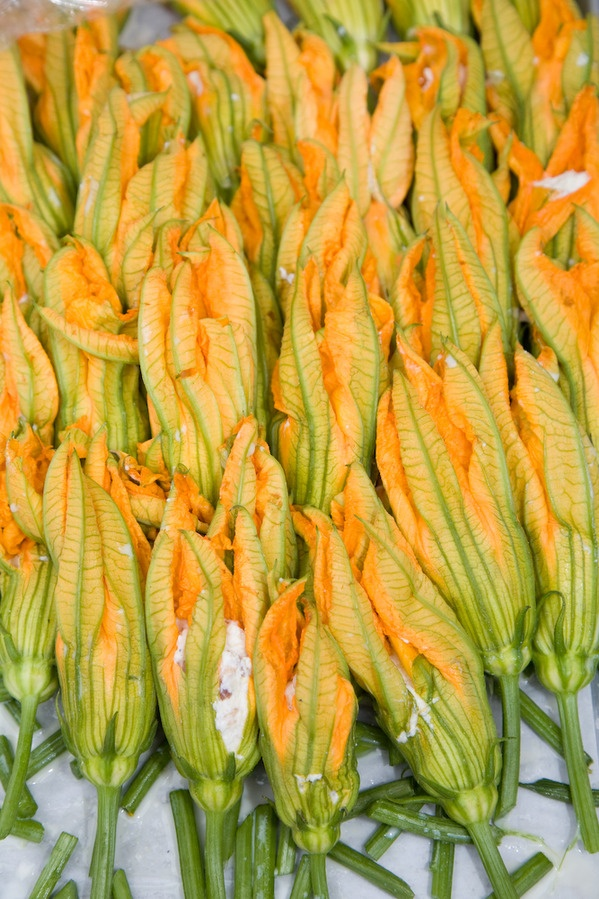 one of my favorite appetizers: Best Recipes, Zucchini Squash, Stuffed Squash Blossoms, Zucchini Flowers, Summer Squash Recipes, Fries Squash, Tomatoes Couli, Squash Blossoms Recipes, Veggies Squash Recipes