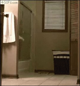 25 GIFs of Classic Bathroom Humor from GifGuide