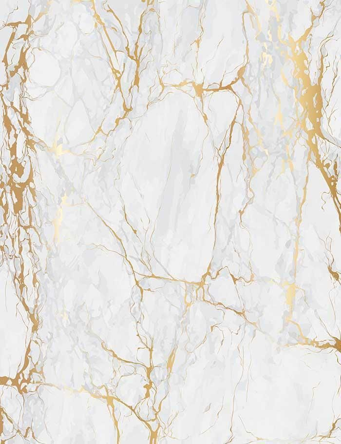 Smoke White Marble With Golden Texture Photograhy Backdrop J 0197