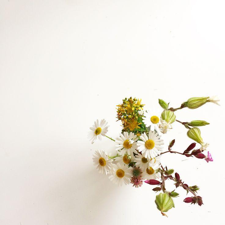 White. Flowers. Trick.