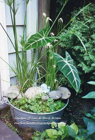 so want to do this! a galvanized tub creates a mini water garden! LA BONNE IDEE DES CAILLOUX