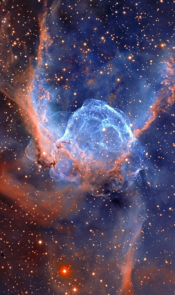 NGC 2359, better known as the Thor's Helmet nebula, is actually more like an interstellar bubble, blown as a fast wind from the bright, massive star near the bubble's center sweeps through a surrounding molecular cloud. The central star is an extremely hot giant Wolf-Rayet star, thought to be in a brief, pre-supernova stage of evolution. It lies about 15,000 light years from Earth in the constellation Canis Major, measuring about 30 light years.
