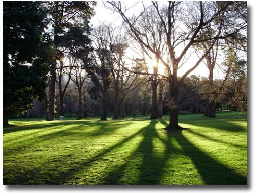 It's Winter in the Fitzroy Gardens, Melbourne, Australia...the trees are bare and resting up for Springtime compliments of http://www.flickr.com/photos/9028461@N07/2697589953/