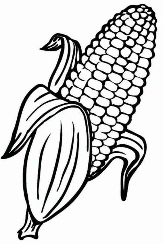12 Fun Real And Cute Corn Coloring Pages For Kids Halaman