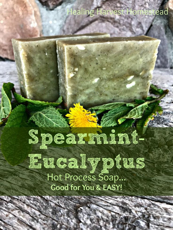 One of my friends asked me to make some of my Spearmint-Eucalyptus soap for  her, so I thought I'd share my recipe with you! I use the hot process  method of soap making most of the time because the soap can be ready to go  right away, even though you're using sodium hydroxide (lye), which ALL t