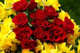 This combination is simply pretty- Red and Yellow roses
