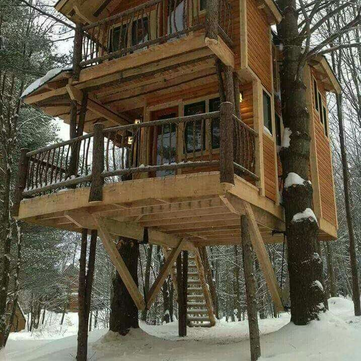Future Tree Houses 107 best treehouses in the garden images on pinterest