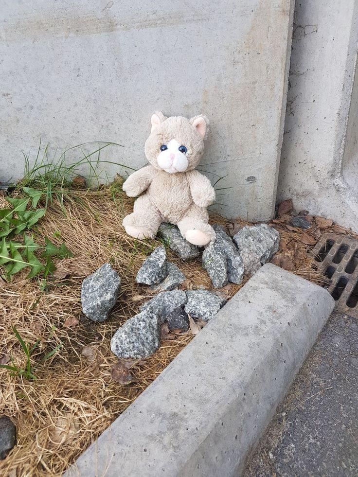 Denna satt under en viadukt i Hamar, Norge.. någon som tappat mig?