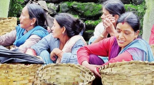 As Pujas comes near Darjeeling Hills Tea Garden workers forced to agree to 19% Bonus   What happened in labour negotiations yesterday was deplorable. Merely 9 days ahead of the biggest festival in our hills Dashain the tea garden owners held the workers to almost a hostage like situation.  Forced to choose between ruining their festivals or accepting what was given the workers yesterday agreed to only 19% bonus this year a 1% decline in bonus compared to 2015. Despite the fact that this year…