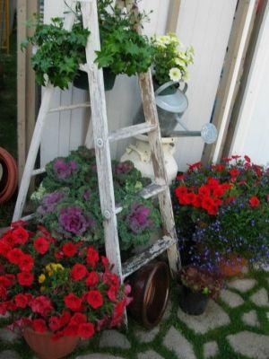 Container garden display
