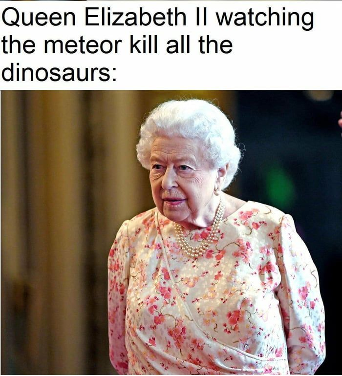 The Queen Was Here Before The Earth Even Formed And Will Be Here Long After Our Solar System Perishes Into The Celebrity Memes Queen Elizabeth Memes Queen Meme