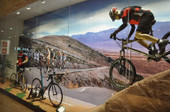 Bikes with roadscape in Adventure HQ Window Display August 2011