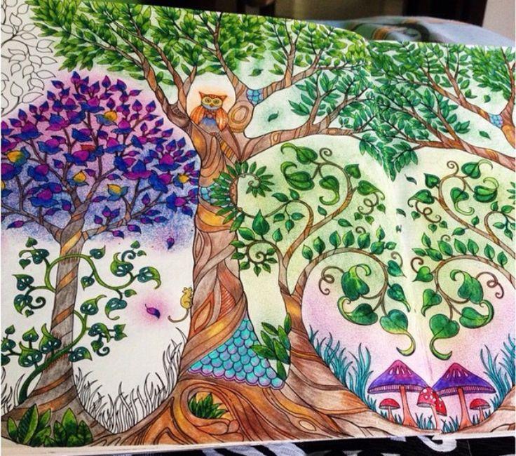 Trees Owl Enchanted Forest Rvores Coruja Floresta Encantada Johanna Basford Adult ColoringColoring BooksBook