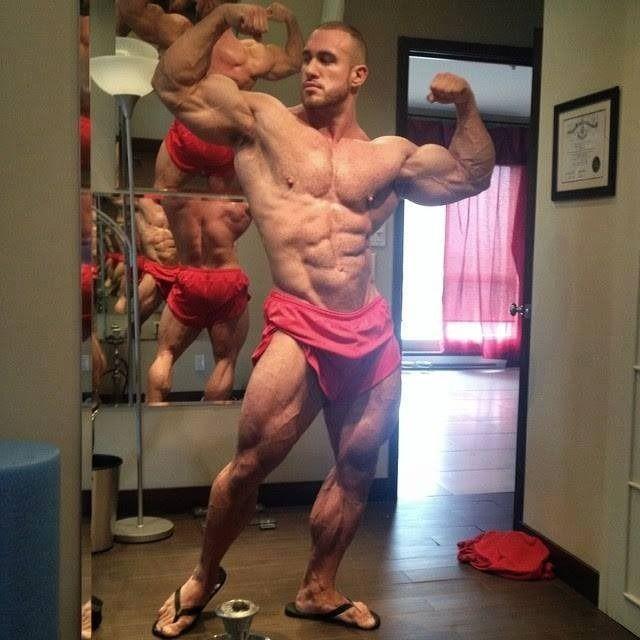 quebecois ifbb bodybuilder antoine valliant body
