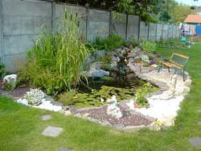 Les 15 meilleures images propos de bassin pour canards sur pinterest tangs d 39 arri re cour - Bassin canard d ornement pau ...