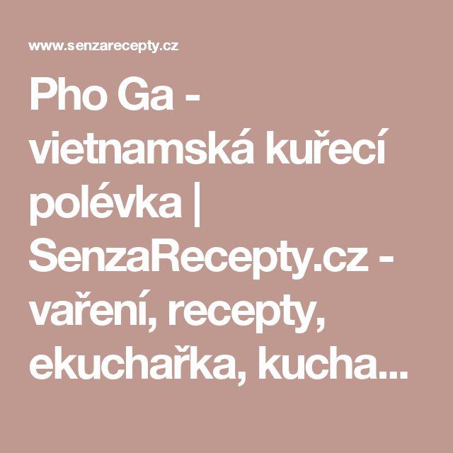 Pho Ga - vietnamská kuřecí polévka | SenzaRecepty.cz - vaření, recepty, ekuchařka, kuchařka s videorecepty
