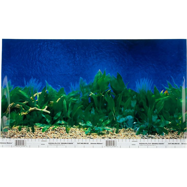Petco reversible aquarium background in blue amazon waters for Freshwater fish petco